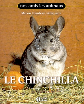 Le Chinchilla de Dre. Manon Tremblay, Becs et Museaux Val-d'Or